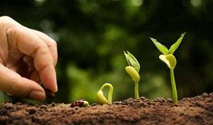 2020: COSA SI ASPETTA L'AGRICOLTURA