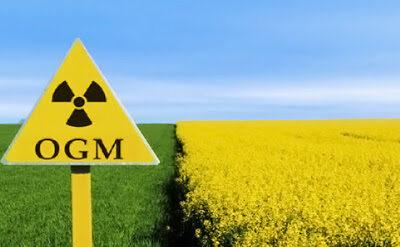 CONFEURO: BIOTECNOLOGIE E OGM, L'EUROPA SOFFRE ANCORA DELLA SINDROME DEL GAMBERO