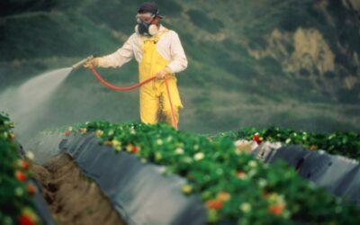 CONFEURO:  CAMBIAMENTI CLIMATICI E PARASSITI, L'AGRICOLTURA PAGA UN PREZZO TROPPO ALTO