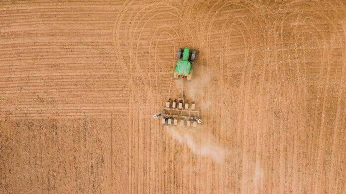 CONFEURO:  NUOVA PAC, IL TAGLIO DELLE RISORSE PENALIZZA L'AGRICOLTURA ITALIANA