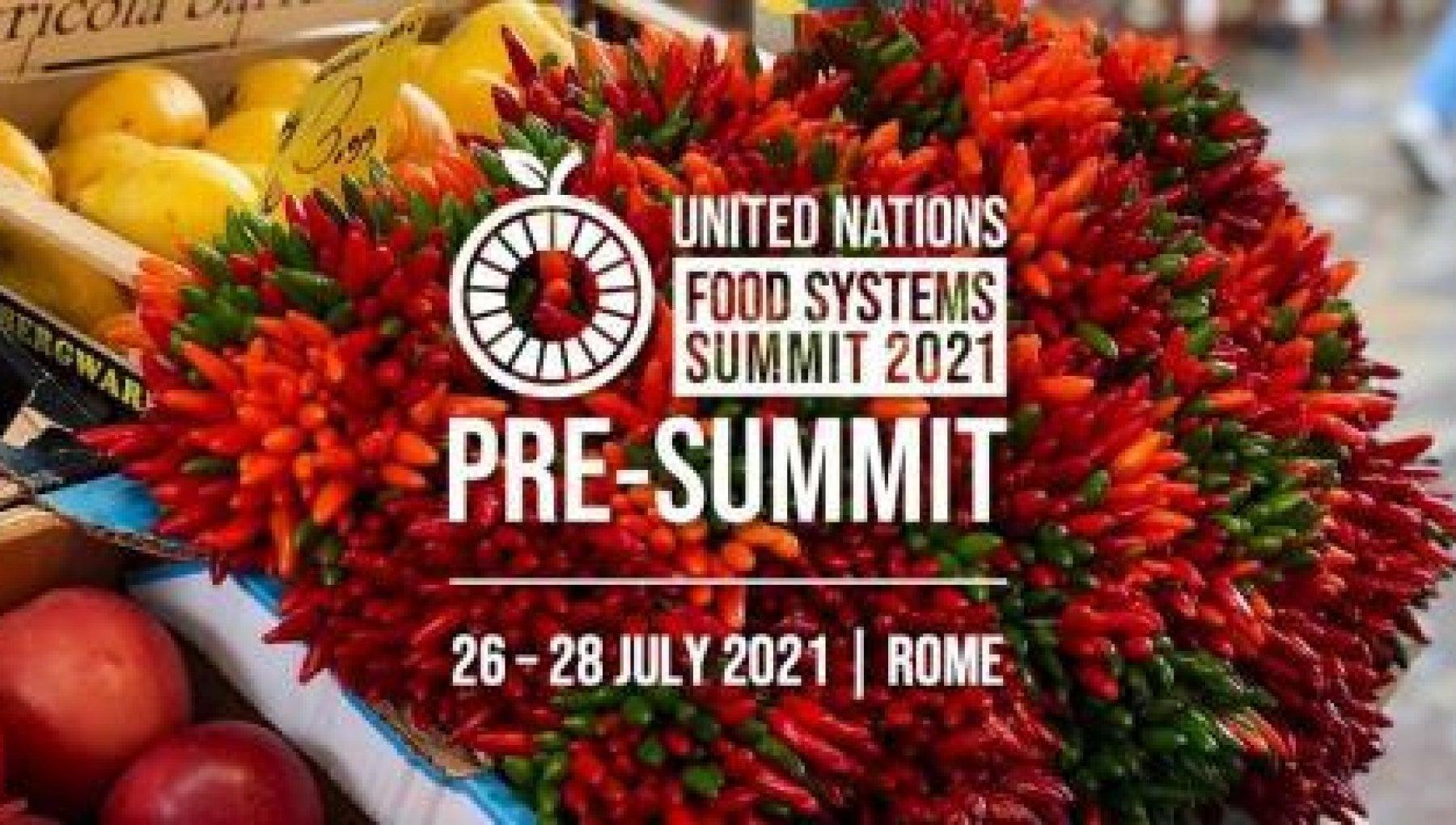 summit Roma
