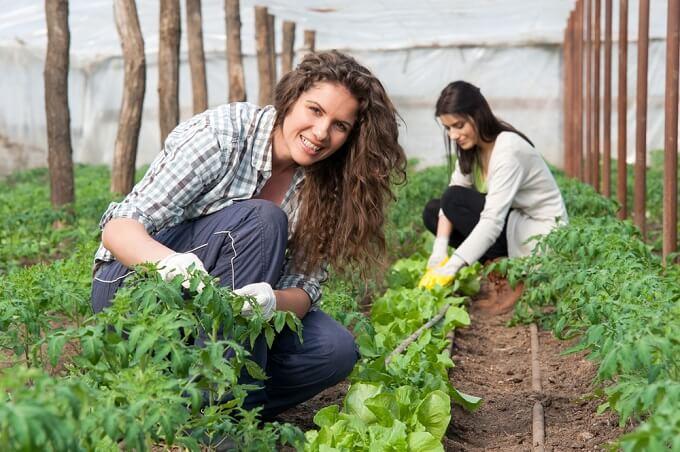CONFEURO: BOOM DI GIOVANI COLTIVATORI, PER L'AGRICOLTURA LA RIPRESA È GIÀ UNA REALTÀ
